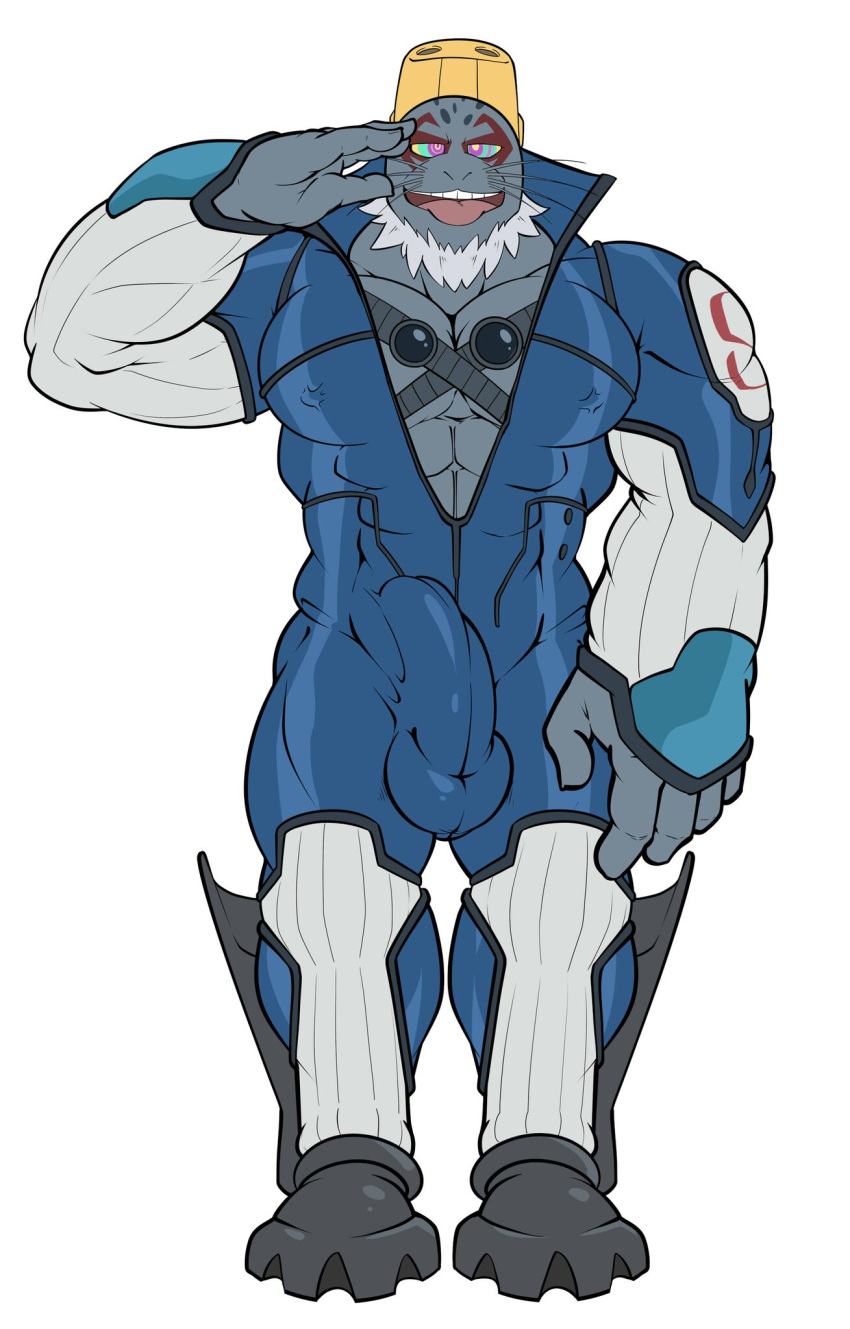 tsu hero boku academia no Sekai seifuku:bouryaku no zvezda