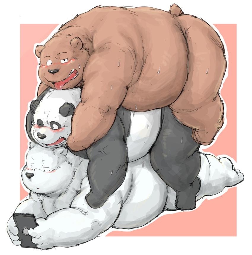 bears bear we Nou-battle wa nichijou-kei no naka de