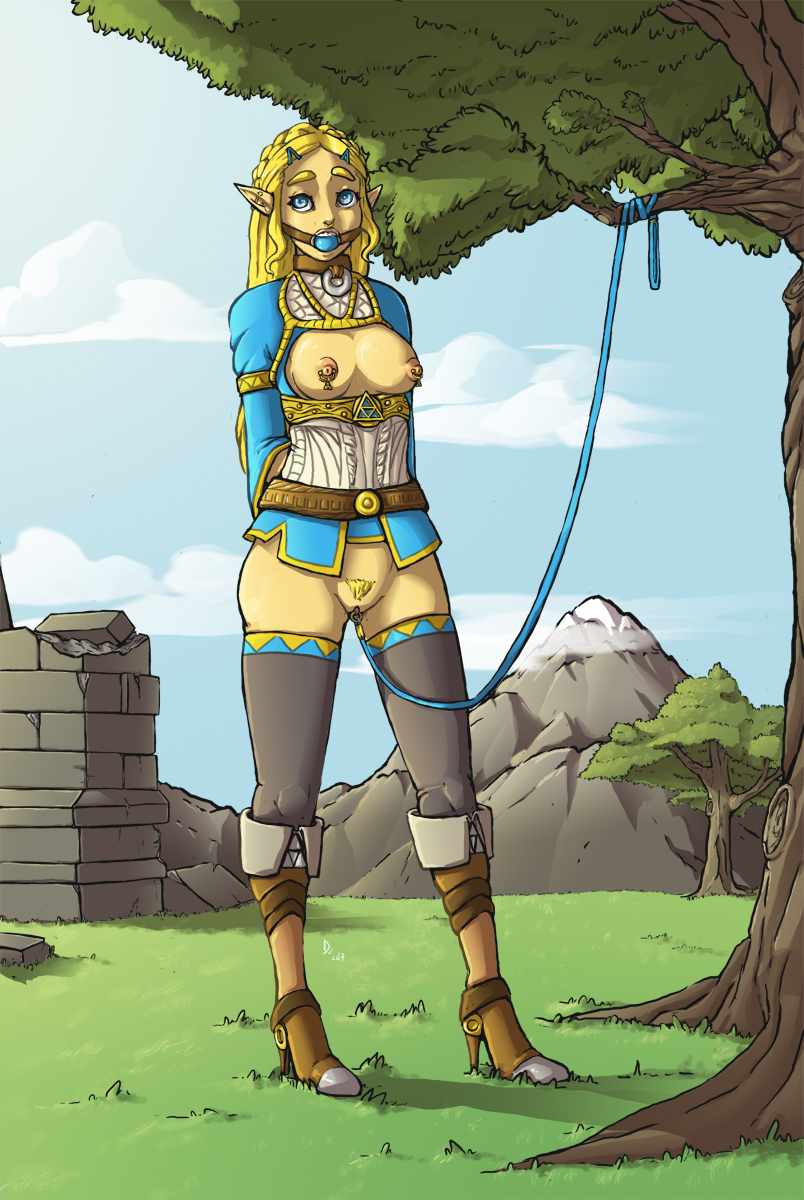 zelda the booty of breath wild If it exists there is porn for it